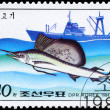 NORTH KOREA - CIRCA 1984 Sailfish — Stock Photo