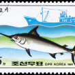 NORTH KOREA - CIRCA 1984 Swordfish — Stock Photo