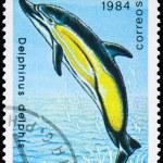 Постер, плакат: CUBA CIRCA 1984 Dolphin