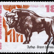 BULGARIA - CIRCA 1973 Bison — Stock Photo