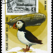 Постер, плакат: MONGOLIA CIRCA 1981 Graf Zeppelin and Puffin