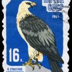 USSR - CIRCA 1964 Lammergeier — Stock Photo