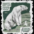 Stock Photo: USSR - CIRC1964 Polar Bear