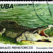 CUBA - CIRCA 1982 Crocodile — Stock Photo