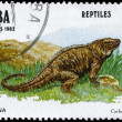 Royalty-Free Stock Photo: CUBA - CIRCA 1982 Iguana