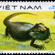 VIETNAM - CIRCA 1983 Bearded Dragon — Stock Photo #6267896
