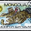MONGOLIA - CIRCA 1985 Lying Leopards - Stock Photo