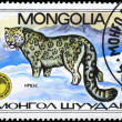 MONGOLIA - CIRCA 1985 Leopard - Stock Photo