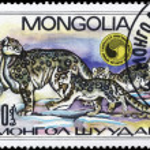 Постер, плакат: MONGOLIA CIRCA 1985 Leopards