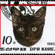 NORTH KORE- CIRC1983 Cat(red) — Stock Photo #6268298
