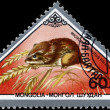 MONGOLIA - CIRCA 1983 Mouse — Stock Photo #6268389