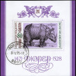 BULGARIA - CIRCA 1979 Rhino — Stock Photo