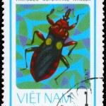 Постер, плакат: VIETNAM CIRCA 1982 Soldier Bug