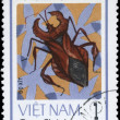 VIETNAM - CIRCA 1982 Squash Bug — Stock Photo