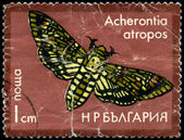 BULGARIA - CIRCA 1975 Hawkmoth — Stock Photo
