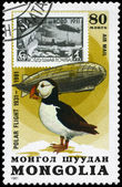 MONGOLIA - CIRCA 1981 Graf Zeppelin and Puffin — Stock Photo