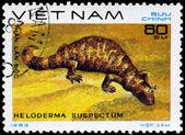 VIETNAM - CIRCA 1983 Gila Monster — Stock Photo
