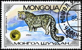 MONGOLIA - CIRCA 1985 Leopard — Stock Photo