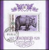 Bulgarien - circa 1979 rhino — Stockfoto