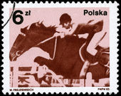 POLAND - CIRCA 1983 Equestrian — Stock Photo