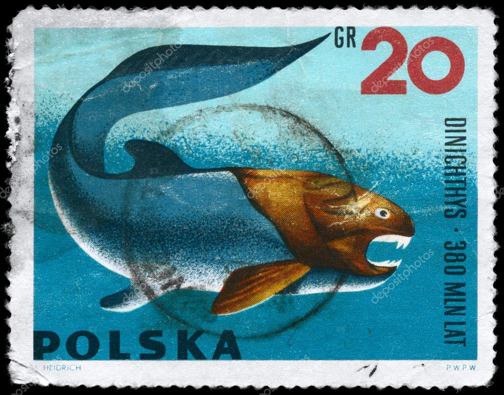 POLAND - CIRCA 1966: A Stamp printed in POLAND shows image of a Dunkleosteus with the inscription Dinichthys from the series Prehistoric Animals, circa 1966 — Stock Photo #6264057
