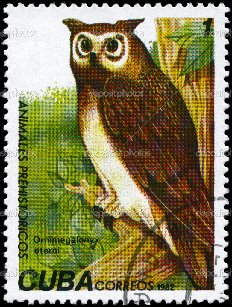 CUBA - CIRCA 1982: A Stamp printed in CUBA shows image of a Giant Owl with the designation Ornimegalonyx oteroi from the series Prehistoric Fauna, circa 198 — Stock Photo #6267731