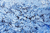 Frost texture — Stock Photo