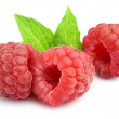 Juicy raspberry with leaves of mint — Stock Photo