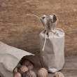 Walnuts in kraft paper bag — Stock Photo #5418022