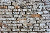 Старая кирпичная стена Hdr — Стоковое фото