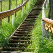 Wooden staircase leading up the hill — Stock Photo