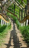 Escada de madeira até o morro — Foto Stock