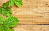 Strawberry leaves on a wooden background — Stock Photo