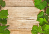 Grapevine on a wooden background — Foto de Stock