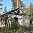 Stock Photo: Lone burnt house in the woods