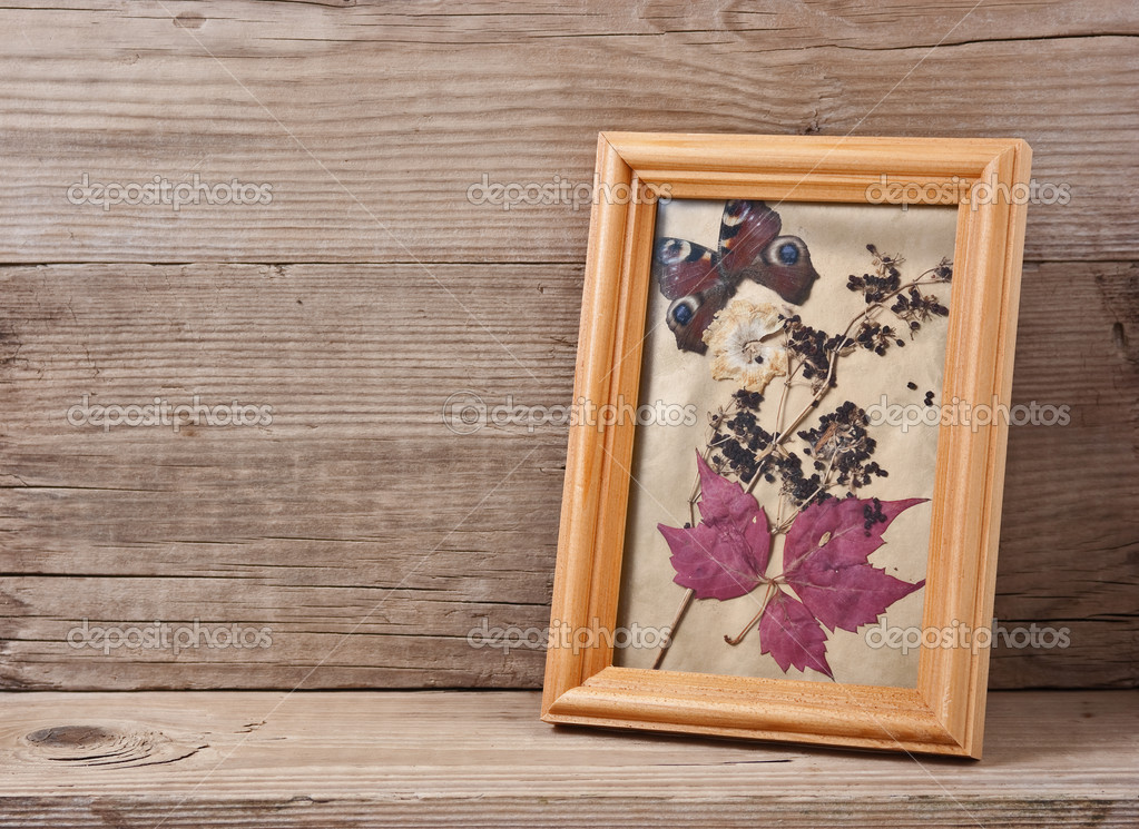 Herbarium in frame on a wooden background — Stock Photo #5906391