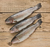 Rainbow trout on a wooden board — Stock Photo