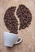Picture of coffee beans — Stock Photo