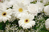 White flowers backdrop - chrysanthemums and roses — Stock Photo