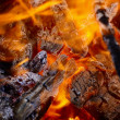 Forest fire - flaming coals — Stock Photo #6157120