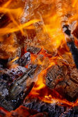 Forest fire - flaming coals — Stock Photo