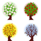 Vector illustration of the four seasons of apple tree. — Stock Vector