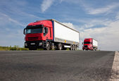 Two red trucks on road — Stock Photo