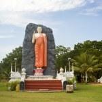 Buddha statue — Stock Photo #5873602