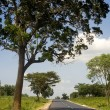 Country road in Sri Lankan - Foto Stock