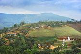 Sri Lankan village — Stockfoto