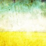 Wheat field — Stock Photo #5552430