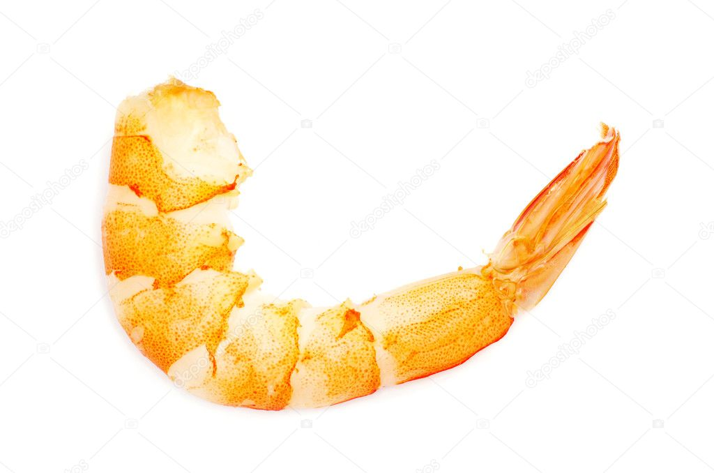 Shrimp isolated ona white background — Stock Photo #5687259