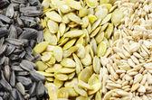 семена подсолнечника и тыквы — Стоковое фото
