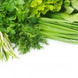 Herbs on white — Stock Photo #6666059